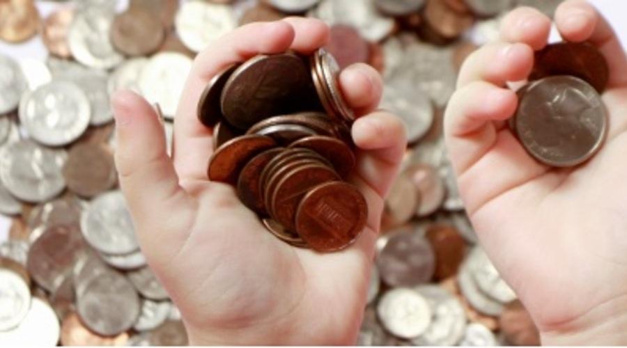 Usuario Con Monedas En La Mano