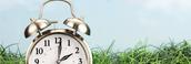 Shutterstock 129942332