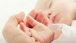 Shutterstock 129290474
