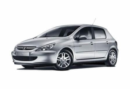 Imagen de Peugeot 307